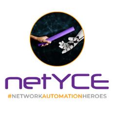 netyce network automation heros logo
