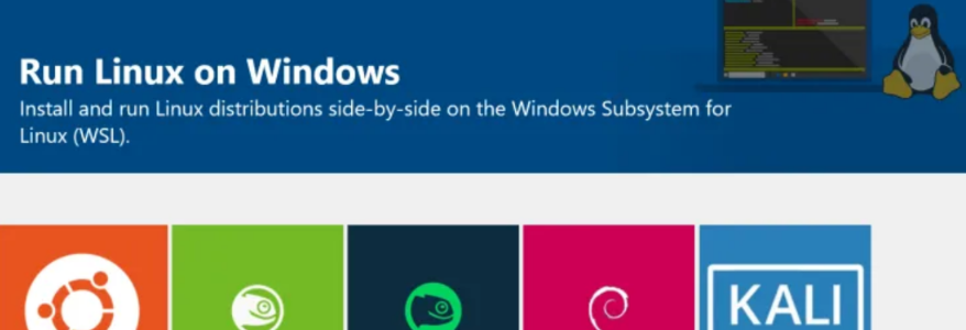 Windows Subsystem for Linux Review and Installation Tutorial