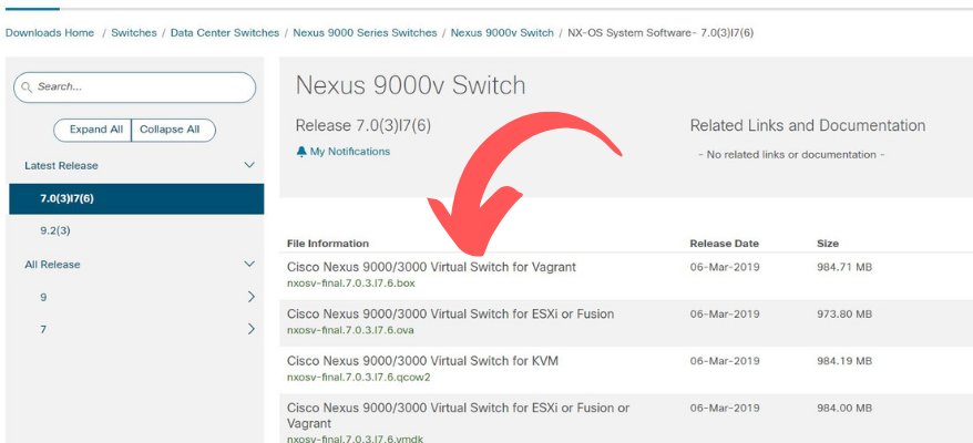 How to run a NEXUS 9000v Switch on your Windows 10 Laptop